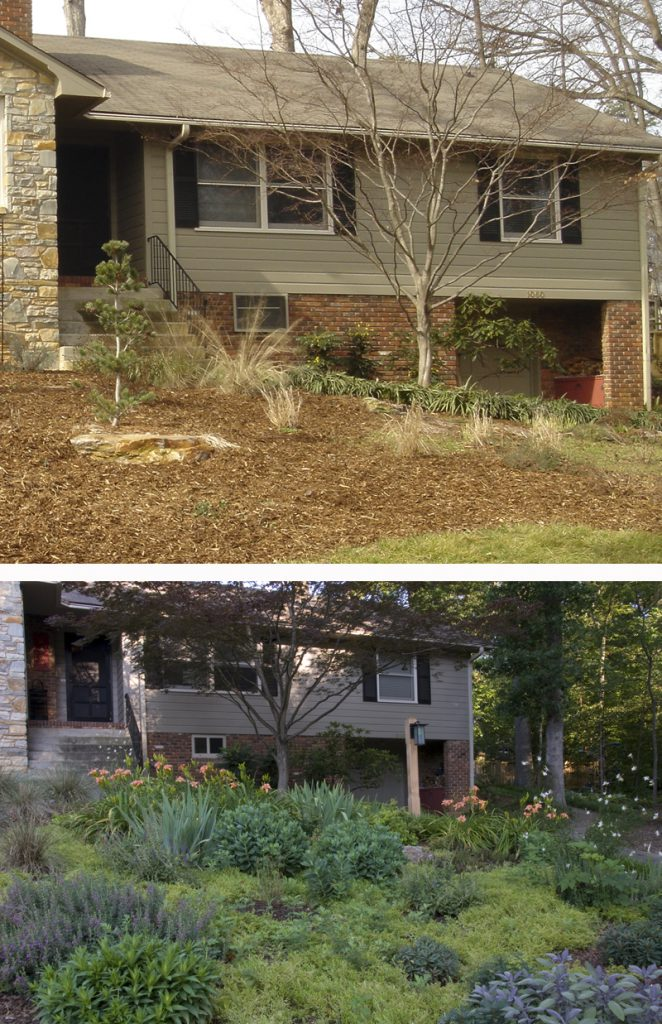 Landscaping Don't: The (Over)Mulching of America