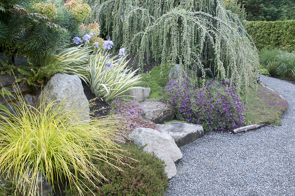 A Beautiful Drought Tolerant Garden Xeriscaping For Water